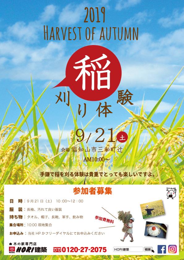 稲刈り 体験